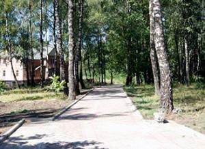 park-81