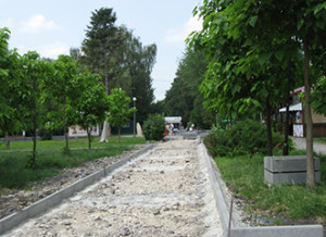 park-5