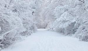 Snow-HD-1440x900