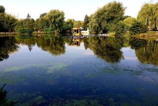 ochishchennya-vodoymi-u-parku-topilche-2