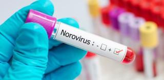30199_rotovirus-i-norovirus---raz