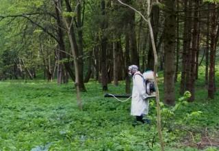 akaritsidni-zahodi-park-topilche-traven-2020
