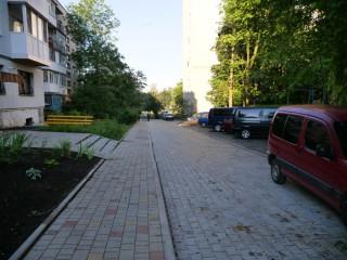 obizd-pushkina-28-07-2020-7