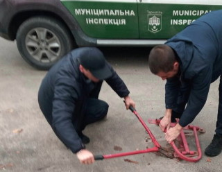 demontag-na-vul_-lesi-ukrainki-13-govtnya-2020-roku