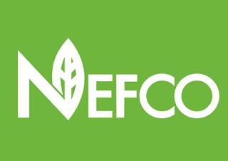 NEFCO-modernizatsiya-osvitlennya-u-ternopoli