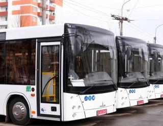 novi-avtobusi-maz206-ternopil-2020-3